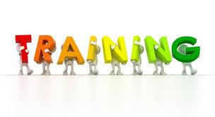 Training Business Writing